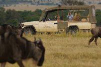 Safariye çıkarken de konfor mümkün