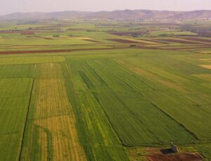 172 bin metrekarelik arazi, sanayi alanı olacak