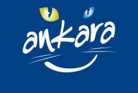 Ankara Büyükşehir Belediyesi, 10 arsayı satışa çıkardı!