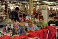Türkiye, Avrupa'nın en büyük üreticisi oldu