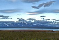 Tierra Patagonia Hotel sanki bir doğa harikası