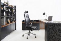 Ofisci, Black Pearl'ü yönetici odaları için tasarladı