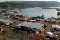 Poyrazköy'e balıkçı barınağı ve çekek alanı yapılacak