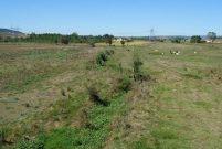 Salihli Belediyesi 12 adet arazi, arsa ve bina satacak