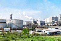 Türkiye Şeker Fabrikaları'nın 40 taşınması özelleştiriliyor