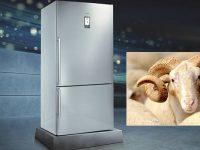 Siemens'in XXL beden buzdolapları kurban bayramını bekliyor