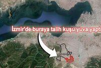 Karabağlar'da 1014 dönümün yeni imar planları askıya çıktı