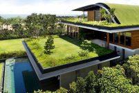 ÇATIDER: Yeşil çatı uygulamalarının artmasını destekliyoruz