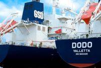 GSD Holding, Hollanda'da kurduğu gemicilik şirketini devraldı