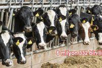 Mehmet Özçağlar Süt Ürünleri'nin çiftliği icradan satılıyor