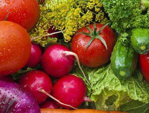 Ataşehir yaş sebze meyve hali 2 yıla kadar Tuzla yolcusu