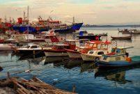 Pendik'e bir milyon liraya balıkçı barınağı yapılıyor
