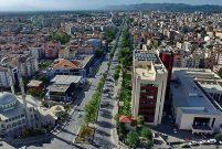 Aydın'da 4,4 milyon TL'ye 12,3 dönüm zeytinlik
