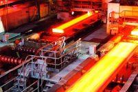 TMSF dev metal fabrikasını satışa çıkardı
