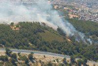 İzmir'de yüzlerce hektarlık alan kül oldu