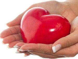 Kızılay Amasya'ya kan toplama merkezi yaptıracak