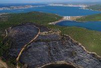 Ayvalık'ta 3 hektarlık tabiat parkı kül oldu