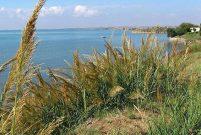 Hazine arazilerinden 82 milyon metrekare yatırıma dönüştü