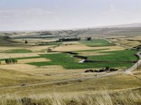 TİGEM'den üreticilere arazi desteği