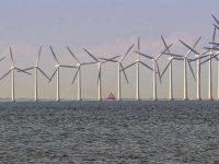 İlk deniz üstü rüzgar santrali için son başvuru 23 Ekim'de