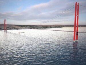 1915 Çanakkale Köprüsü inşaatında biyoçeşitlilik hassasiyeti