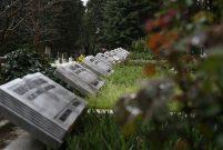 İstanbul'da mezarlık fiyatları rekora koşuyor