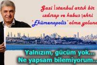 Vefik Alp: İstanbul'u da gazi ettik!