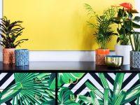 Dekorasyonda yeni trend ev bitkileri