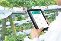 Dijital tarım için 20 yeni OSB