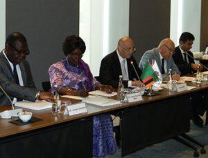 Zambiya'dan 1.3 milyon konutluk teklif