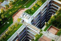 Yeşil çatılar yağmur ve sel baskınlarının etkisini azaltıyor