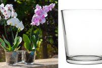 Paşabahçe'den orkideler için cam saksı