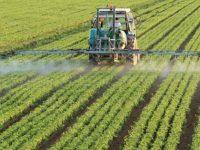 Belediyeler tarım arazilerini kurtarabilir!