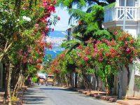 Adalar'da konutlar 725.160 TL, geri dönüşü 31 yıl