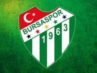 Bursaspor'da Hazine arazisine günübirlik tesis önerisi