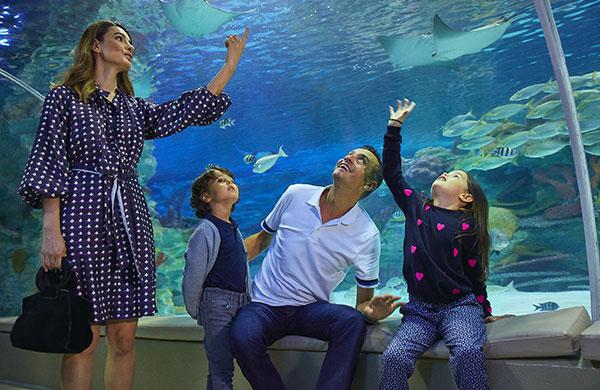 Emaar Akvaryum ve Sualtı Hayvanat Bahçesi yeniden açıldı