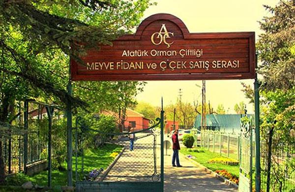 Atatürk Orman Çiftliği arazisi kiraya çıkarıldı!