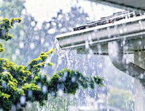 Yağmur suyu artık tuvalette kullanılacak